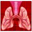 Lungen Whatsapp U+1FAC1