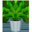Topfpflanze Emoji U+1FAB4